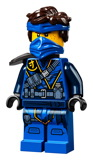 2021-01-14 March Ninjago Sets 21