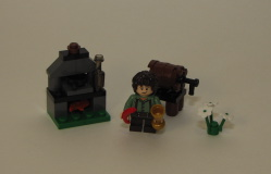 30210 Frodo Baggins Review 14